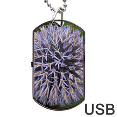 Globe Mallow Flower Dog Tag Usb Flash (two Sides)  by MichaelMoriartyPhotography