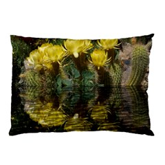 Cactus Flowers With Reflection Pool Pillow Case by MichaelMoriartyPhotography