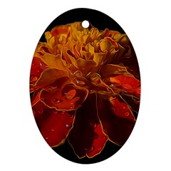 Marigold On Black Oval Ornament (two Sides) by MichaelMoriartyPhotography