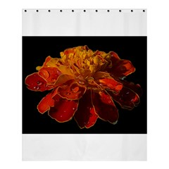 Marigold On Black Shower Curtain 60  X 72  (medium)  by MichaelMoriartyPhotography