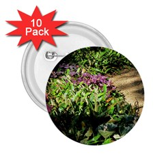 Shadowed ground cover 2.25  Buttons (10 pack)