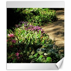 Shadowed Ground Cover Canvas 8  X 10  by ArtsFolly