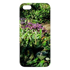 Shadowed Ground Cover Apple Iphone 5 Premium Hardshell Case by ArtsFolly