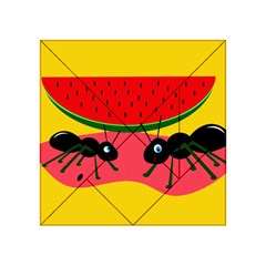 Ants and watermelon  Acrylic Tangram Puzzle (4  x 4 ) by Valentinaart