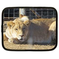 FeMale Lion Netbook Case (Large) by jackiepopp