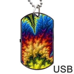 Amazing Special Fractal 25a Dog Tag USB Flash (Two Sides)  by Fractalworld
