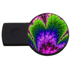 Amazing Special Fractal 25c Usb Flash Drive Round (4 Gb)  by Fractalworld