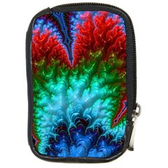 Amazing Special Fractal 25b Compact Camera Cases by Fractalworld
