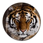 Tiger Round Mousepad