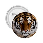 Tiger 2.25  Button