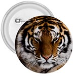 Tiger 3  Button