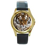 Tiger Round Gold Metal Watch