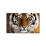 Tiger Sticker Rectangular (10 pack)