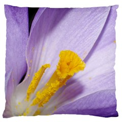 Purple Crocus Standard Flano Cushion Case (Two Sides) by PhotoThisxyz