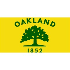Flag Of Oakland, California YOU ARE INVITED 3D Greeting Card (8x4) by abbeyz71