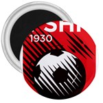 Crest Of The Albanian National Football Team 3  Magnets