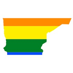 Lgbt Flag Map Of Minnesota  You Are Invited 3d Greeting Card (8x4) by abbeyz71