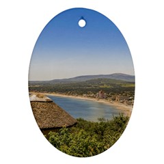 Landscape Aerial View Piriapolis Uruguay Oval Ornament (two Sides) by dflcprints