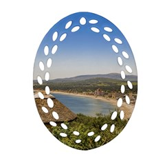 Landscape Aerial View Piriapolis Uruguay Ornament (oval Filigree)  by dflcprints