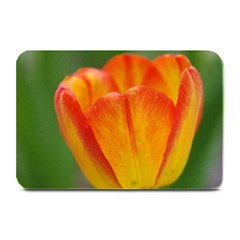 Orange Tulip Table Mats by PhotoThisxyz