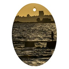 River Plater River Scene At Montevideo Oval Ornament (two Sides) by dflcprints