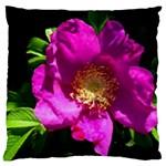 Purple Rose Large Cushion Case (Two Sided)
