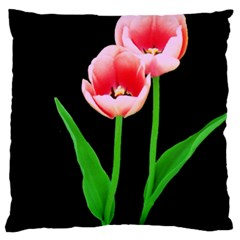 Tulips Flowers Large Cushion Case (two Sided)
