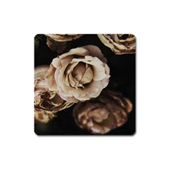 Roses Flowers Square Magnet by vanessagf
