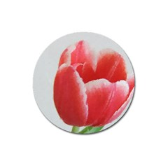Red Tulip Watercolor Painting Magnet 3  (round) by picsaspassion
