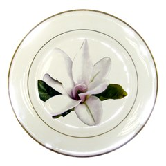 Magnolia Wit Aquarel Painting Art Porcelain Plates by picsaspassion