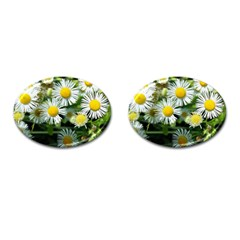 White Summer Flowers Oil Painting Art Cufflinks (oval) by picsaspassion