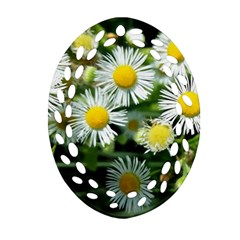 White Summer Flowers Oil Painting Art Ornament (oval Filigree)  by picsaspassion