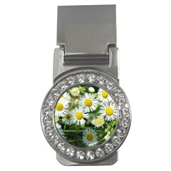 White Summer Flowers Watercolor Painting Art Money Clips (cz)  by picsaspassion