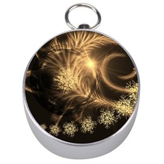 Golden Feather And Ball Decoration Silver Compasses by picsaspassion