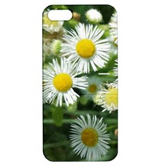 White Summer Flowers, Watercolor Painting Apple Iphone 5 Hardshell Case With Stand by picsaspassion