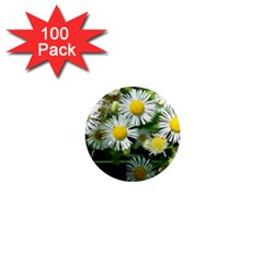 White Summer Flowers Oil Painting Art 1  Mini Magnets (100 Pack)  by picsaspassion