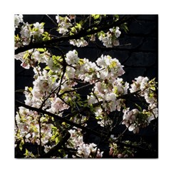 Japanese Cherry Blossom Tile Coasters by picsaspassion
