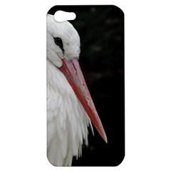 Stork Bird Apple Iphone 5 Hardshell Case by picsaspassion