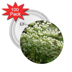 White Summer Flowers 2 25  Buttons (100 Pack)  by picsaspassion