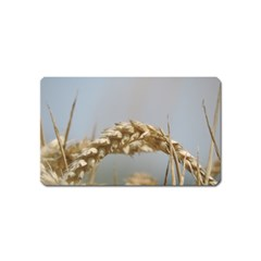Cornfield Magnet (Name Card) by picsaspassion