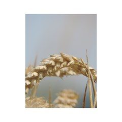 Cornfield Shower Curtain 48  x 72  (Small)  by picsaspassion