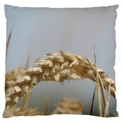 Cornfield Large Cushion Case (two Sides) by picsaspassion