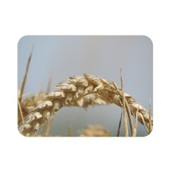 Cornfield Double Sided Flano Blanket (mini)  by picsaspassion
