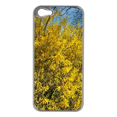 Nature, Yellow Orange Tree Photography Apple Iphone 5 Case (silver)