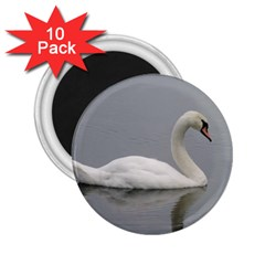 Swimming White Swan 2 25  Magnets (10 Pack)  by picsaspassion