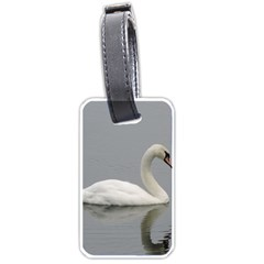 Swimming White Swan Luggage Tags (one Side)  by picsaspassion