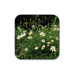 Wild Daisy Summer Flowers Rubber Coaster (square)  by picsaspassion