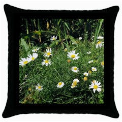 Wild Daisy Summer Flowers Throw Pillow Case (black) by picsaspassion