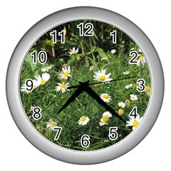 Wild Daisy Summer Flowers Wall Clocks (silver)  by picsaspassion