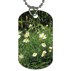 Wild Daisy Summer Flowers Dog Tag (one Side) by picsaspassion
